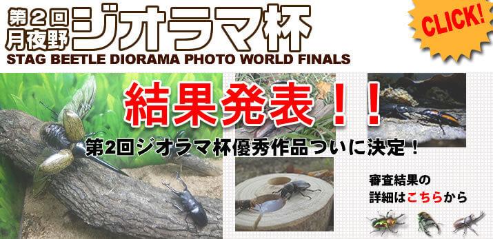 2016年月夜野ジオラマ杯優秀作品表彰ページ