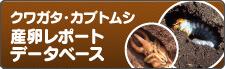 クワガタ・カブトムシ産卵レポート