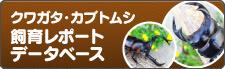 クワガタ・カブトムシ飼育レポート
