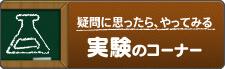 クワガタ・カブトムシ実験のコーナー