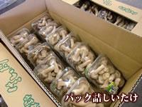 パック詰め椎茸