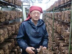群馬県でしいたけ栽培をされている遊佐さん