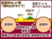 産卵方法3