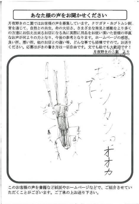 hagaki-382