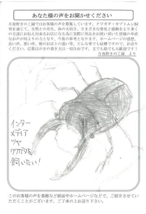 hagaki-424