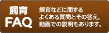 クワガタ・カブトムシ飼育FAQ