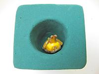 国産カブトムシの人工蛹室の作り方
