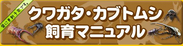 クワガタ・カブトムシ飼育マニュアル