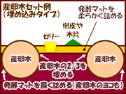 産卵木セット図