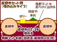 産卵木セット方法