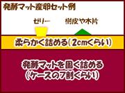 発酵マット産卵図