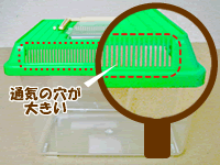 国産カブトムシ産卵セット飼育ケースの注意