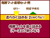 発酵マットの産卵セット例